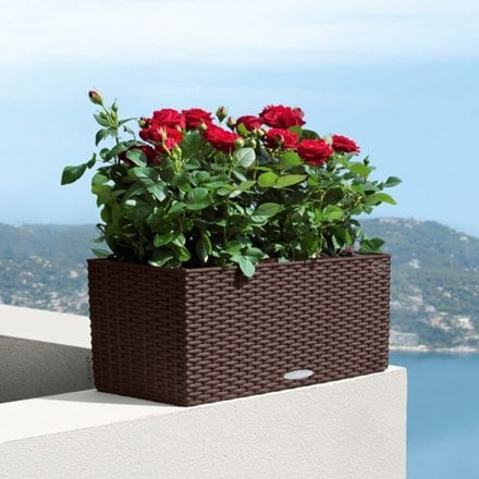 Lechuza Balconera cottage planter mocha