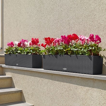 Lechuza Balconera cottage planter granite