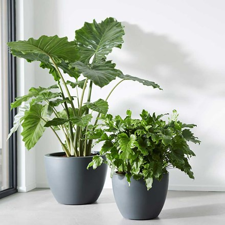Pure soft round pot with wheels anthracite