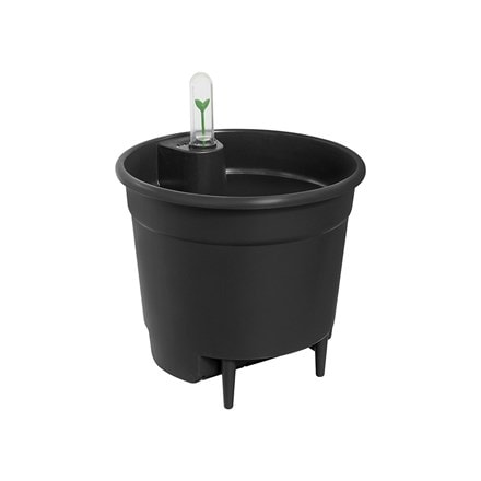 Self watering plant pot insert