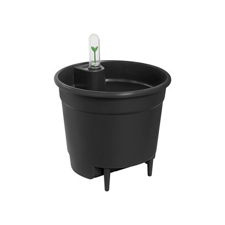 Self watering plant pot insert