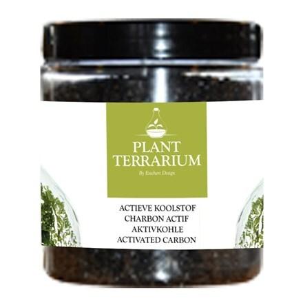 Plant terrarium charcoal