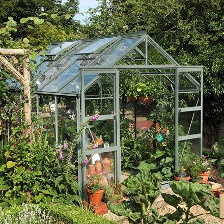 Rhino Classic 'Crocus exclusive package' greenhouse