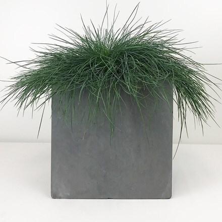 Moden square box contemporary planter light grey