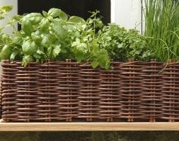Window box with natural willow surround