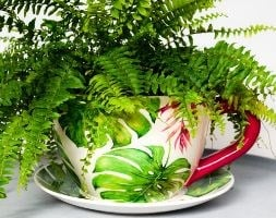 Monza green botanica large teacup