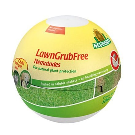 Lawngrubfree nematodes