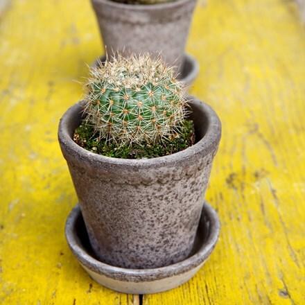 Helena grey pot