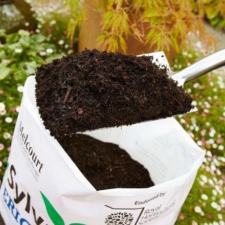 Sylvagrow ericaceous compost