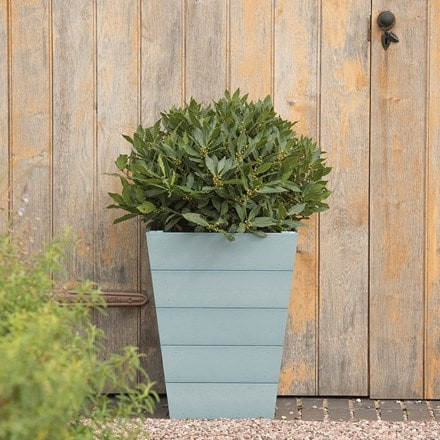 Mews planters powder blue set of 2