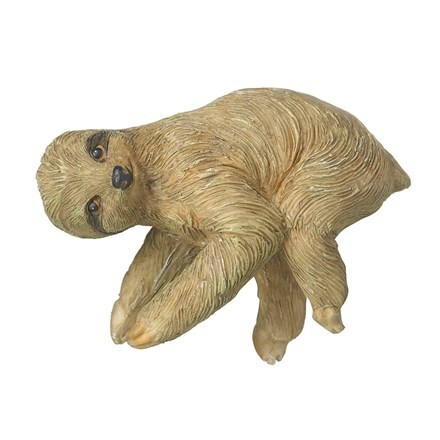 Pothanger sloth