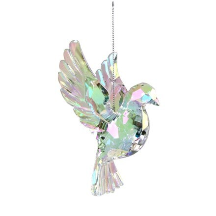 Rainbow iridescent flying dove