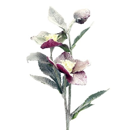 Plum fabric snowy hellebore stem