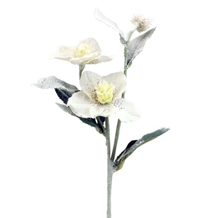 White fabric snowy hellebore stem