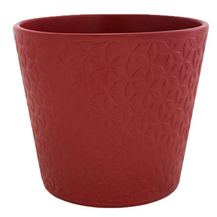 Renna red berry planter