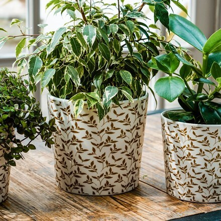 Mistletoe white gold planter