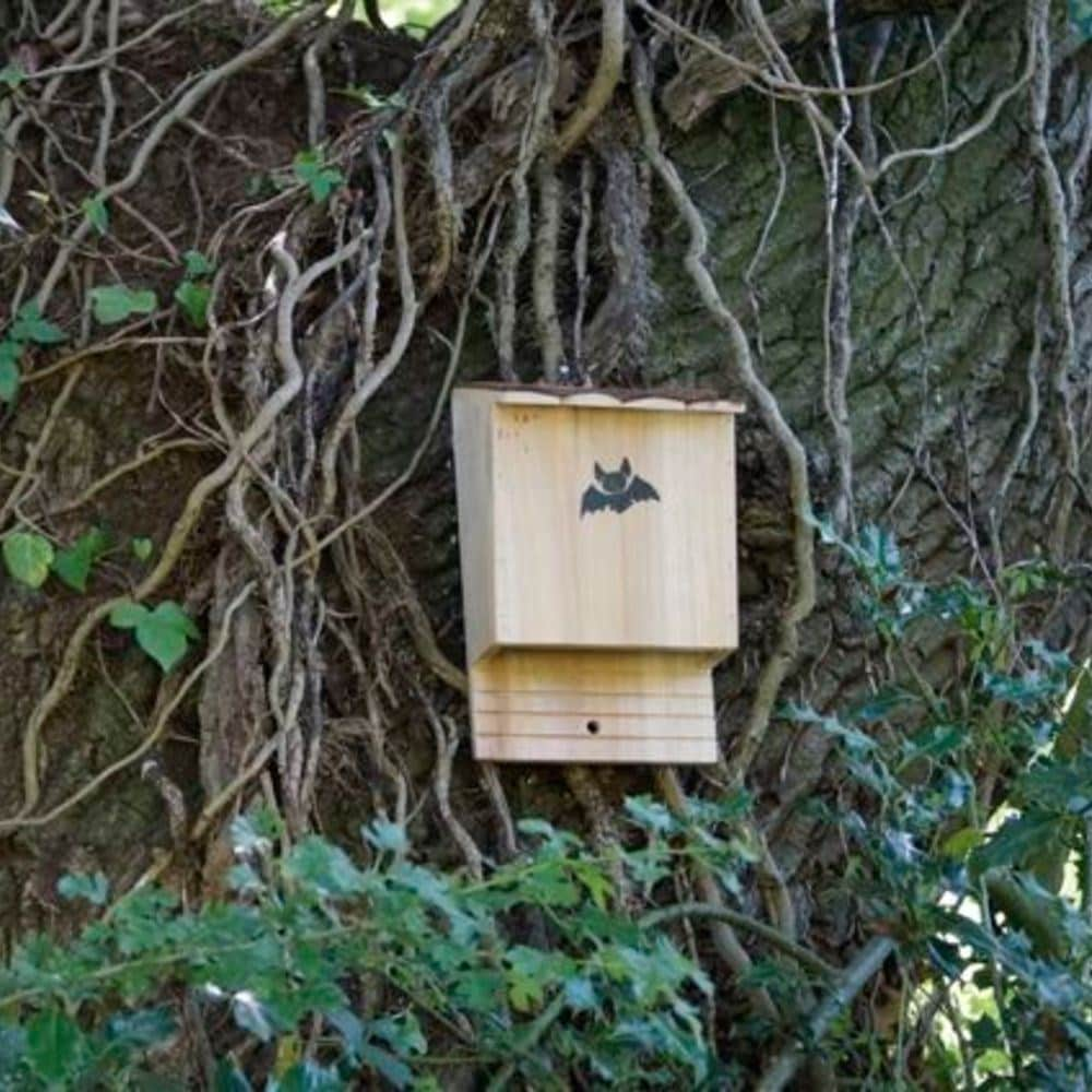 Bat box - large