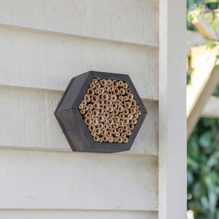 Spruce wild bee house
