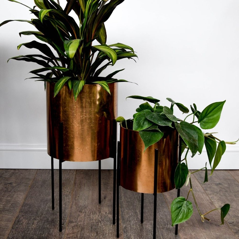 Buy Luso Plant Stand Black Delivery By Crocus