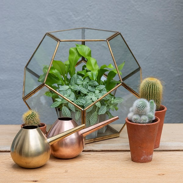 Brass and copper watering hogs
