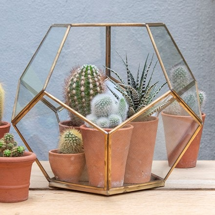 Pentagon terrarium with tray base