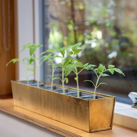 Brass windowsill tray with 6 grow pods