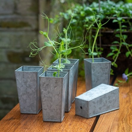 Set of 6 tall galvanised root trainer pots