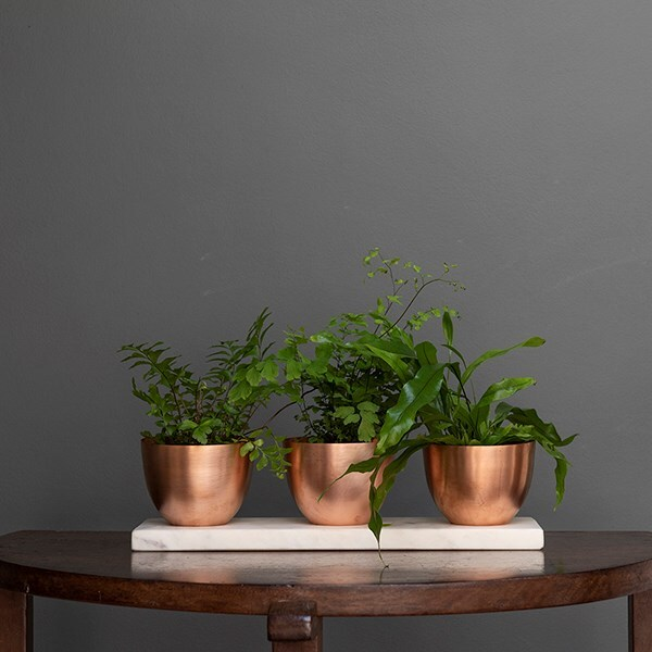 Three copper tilt pots on a slab of white marble