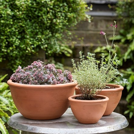 Outdoor pots & containers