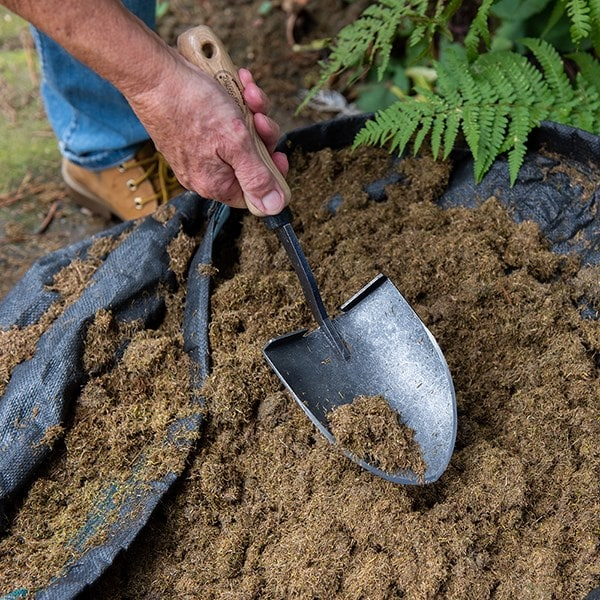 DeWit mini shovel with ash grip