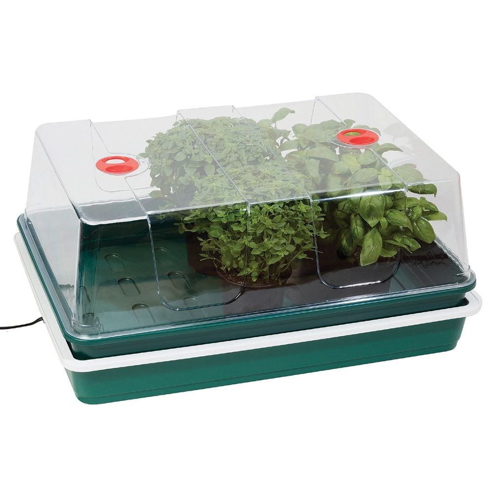 Extra large high dome electric propagator 24W