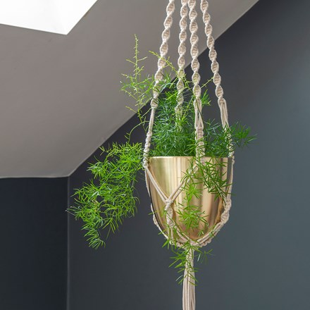 Macrame hanger with brushed brass pot