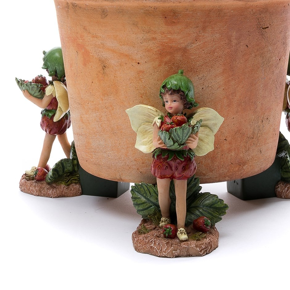Potty feet strawberry fairy