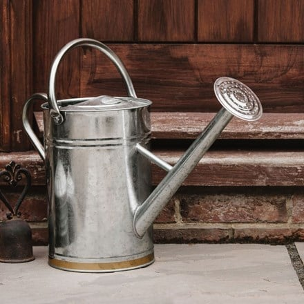 Metal watering can - gold trim