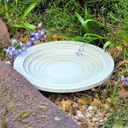 Oasis bird bath and drinker