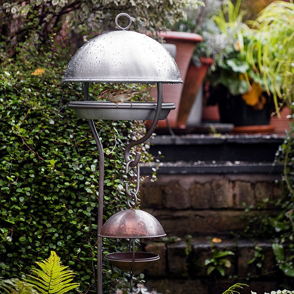 Brushed aluminium stake bird feeding dome