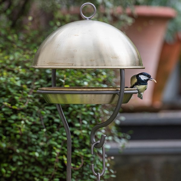 Brushed brass stake bird feeding dome