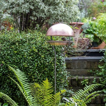 Brushed copper stake bird feeding dome