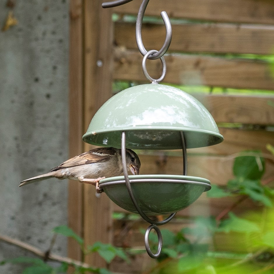 Crocus green satellite bird seed feeder