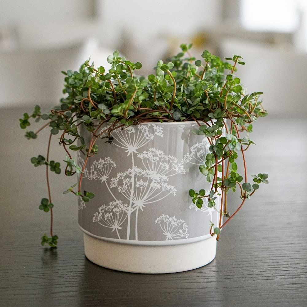 Meadow planter grey