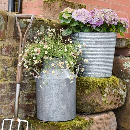 Galvanised milk churn